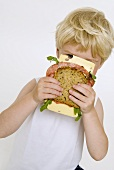 Blond boy holding salami & cheese sandwich in front of his face