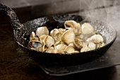 Clams in a frying pan