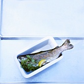 A trout with herbs and lemon in a dish