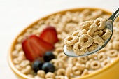 Breakfast cereal with berries and milk