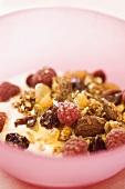 Fruit muesli and yoghurt in bowl