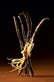 Vanilla pods tied together with raffia