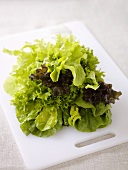 Assorted lettuce leaves on a board