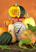 Various pumpkins and squashes with kitchen scales