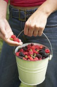 Young woman carrying bucket of freshly picked berries