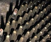 Old Chianti bottles, Il Poggio, Tuscany