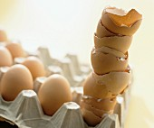 Brown eggs and eggshells in an egg tray