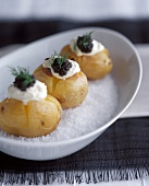 Baked Potato Appetizer