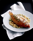 Red Snapper Stuffed with Garlic on a Bed of White Beans
