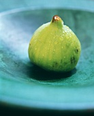 A Green Fig with Water Droplets