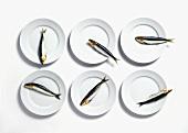 Six sardines on white plates