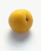 A Yellow Plum