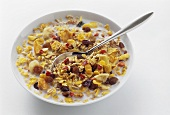 A Bowl of Muesli with Dried Fruits; Spoon