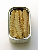 An Opened Can of Sardines