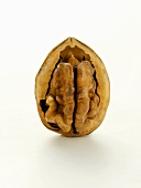 A Half Opened Walnut