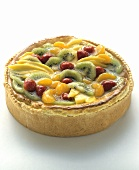 A Whole Fruit Torte