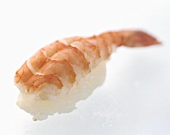 One Shrimp Nigiri Sushi