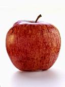 A Braeburn Apple