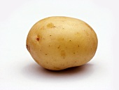 A New Potato