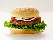 A Hamburger on a Sesame Seed Bun