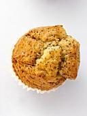 A Lemon Poppyseed Muffin
