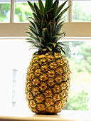 A Pineapple on a Window Sill