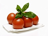 Vine Ripened Tomatoes with Basil on Paper Towel