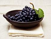 Blaue Trauben mit Blatt in einer Schale