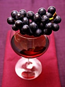 Purple Grapes Resting on a Glass of Red Wine