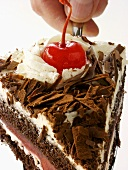Holding a Slice of Black Forest Cake
