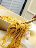 Spaghetti mit Tomatensauce servieren