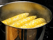 Corn Cooking in a Pot with Water
