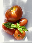 Variety of Tomatoes with Basil