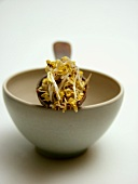 Spoonful of Bean Sprouts Resting on a Bowl