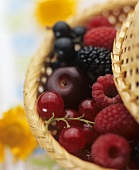 Basket of fresh berries and cherries
