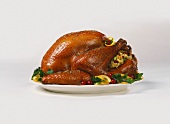 Stuffed Roasted Turkey on a Platter