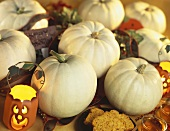 White Pumpkins with Pumpkin Lanterns