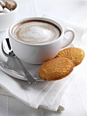 Cup of Cappuccino with Two Madeleines