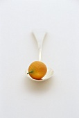 A kumquat on a spoon