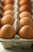 Fresh, brown eggs in an egg box