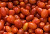 Many Fresh Grape Tomatoes