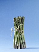 Bundled Asparagus on Blue