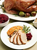 Sliced Turkey with Cranberries, Yams, Asparagus and Stuffing