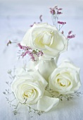 White roses in a vase and to the side