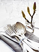 Utensils for Place Setting on a Cloth Napkin