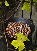 Roasted chestnuts in frying pan