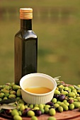 Cold-pressed olive oil and olives, Perugia, Umbria, Italy