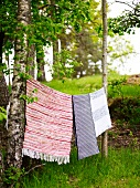 Rugs on a washing line the garden