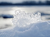 Ice crystals on snow