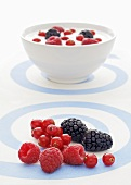 Fresh berries with a bowl of yogurt and berries in the background